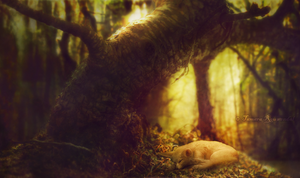 Little Forest Dweller by tamaraR