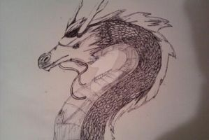Chinese Dragon Sketch (Biro) by Chynna-B
