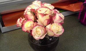 Pink Tipped Rose Bowl by pippierafrostlin