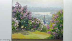 Landscape with lilac bushes by CWbridd