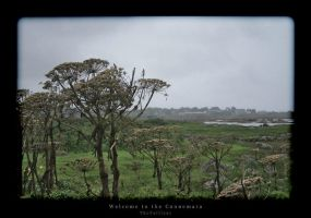 Welcome to the Connemara by thepailleur
