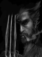 Wolverine by digistyle