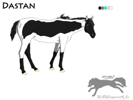 Dastan Ref. sheet by WolfWhisperer4Life