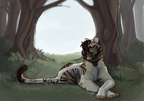The Calm by suchacat