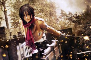 Attack on Titan - Fight by Ranmaru-Mori
