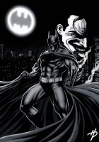 Batman and the Joker 2 by Hal-2012