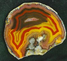 Red and Yellow Agate Mexico by paleoichneum