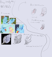 Wings study part 1 by DarkFlame75