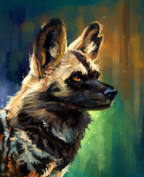 African wild dog by AlaxendrA
