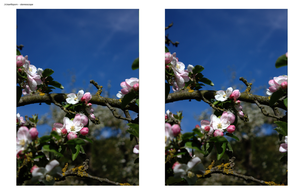 earthporn in stereoscope 2 by sullimkii