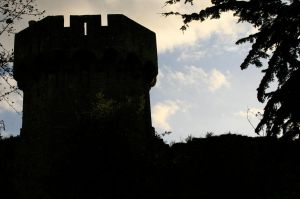 More of Caldicot Castle 2 by Tinap