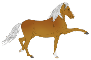 Andalusian Auction Horse 6 by HoofHaven