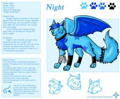 Character Sheet - Night by Angel-soma