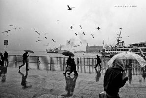 Istanbul Daily by oscarsnapshotter