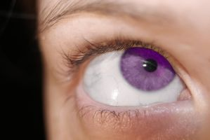 purple eye by tash11