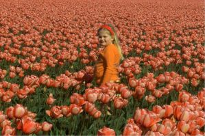 Babe Among The Tulips II by Photos-By-Michelle