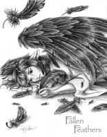 Fallen Feathers by Flowerlark