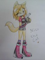 Nico the Cat by DesyTheHedgehog