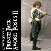 Prince Pack:  Sword Poses 2 by Cobweb-stock