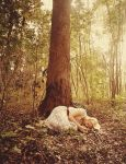 asleep in the woods by aimeelikestotakepics