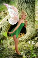 more tinkerbell cosplay3 by clefchan