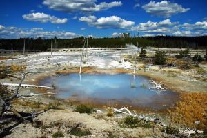 Mammoth Hot Springs 0174 by CrystalAnnPhotos