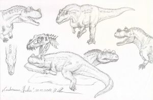 Ceratosaurus sketch - updated by c-compiler