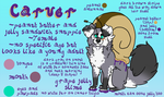 :.Carver.Reference.Sheet.: by meridae