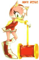 Amy Rose by alexhatsune