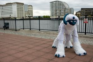 Absol quadsuit by Caslen