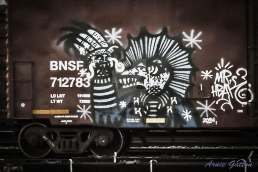 Graffiti on a Boxcar by Oneeyecat