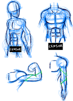 Training male anatomy by Carolzilla