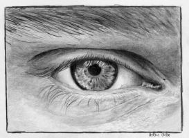 Stephans eye by singsang