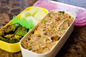 Fried Rice Bento by Demi-Plum