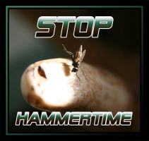 HAMMERTIME by Capt-Morgan