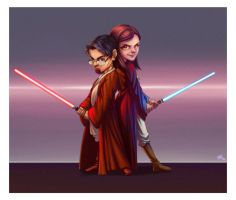 Commission Star Wars by leocirius