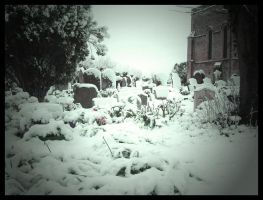 Snow Grave Like A Winter Grave by The-Biroboy