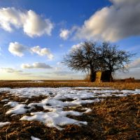 The last remnants of winter by tomsumartin