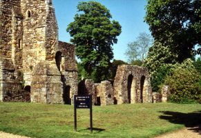 The Abbey ruins by gmtb-stock
