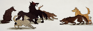 teen wolf's wolfs by radioactivated
