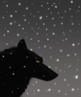 Wolf in snow for 2010 ID by LouaWolf