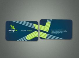 business card 3 by freestyler-87