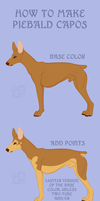 Capo Cane: How to Make Piebald by PaintedCricket