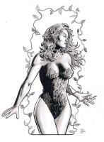 Poison Ivy by craigcermak