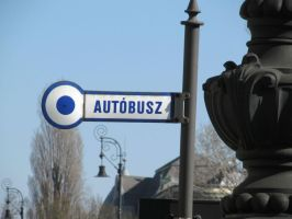 Busz by thaonguyenp27