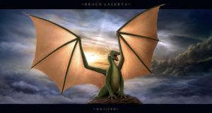 Draco Lacerta by Wraifen