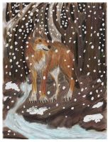 Red Wolf by the Creek by CrystalMarineGallery