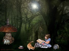 Time For A Story by Shirley-Agnew-Art