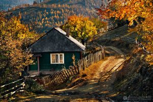 Autumn colors in Apuseni Mountains 22 by adypetrisor
