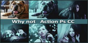 Why not   Action Ps CC by Tetelle-passion